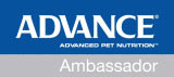 Advance Ambassador